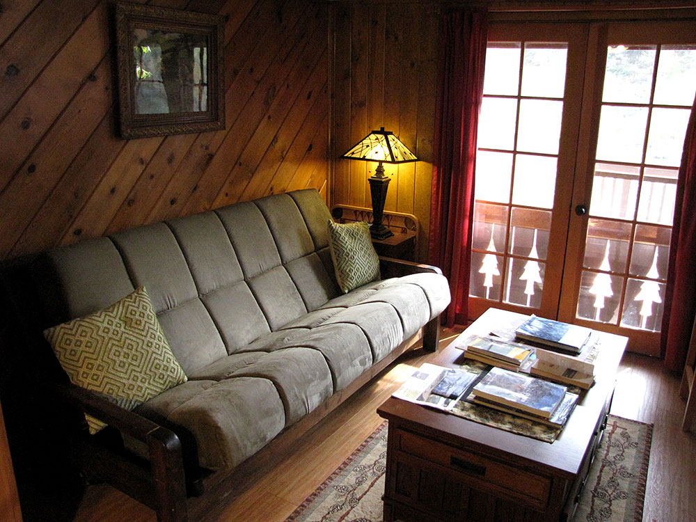 Rogue River cabin couch